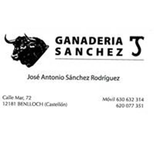 Antonio Sánchez Rodríguez