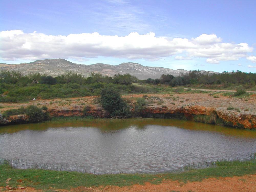 Bassa del Pou Sec