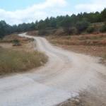 Gual del camí dels Romans
