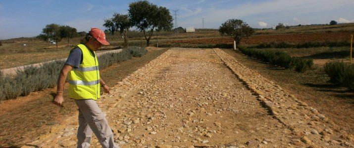 Imatge del voluntariat de 2013, després de netejar el camí dels Romans