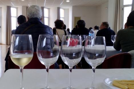 Tast per a professionals: els vins de Sicília – BIWM