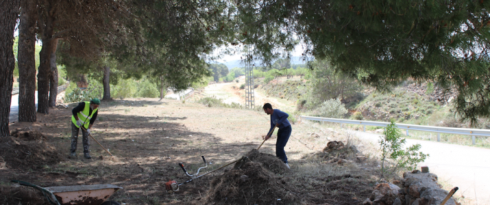 L'Ajuntament prepara una zona de descans al pinar