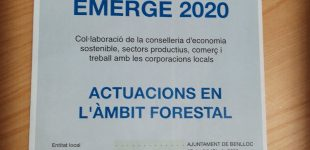 Finalitza EMERGE 2020