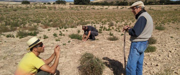 Cap de setmana per l'agricultura regenerativa