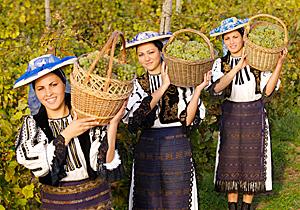 Els vins de la regió històrica romanesa de Moldàvia